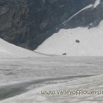 Hemkund Sahib Lake is semi frozen in the month of June
